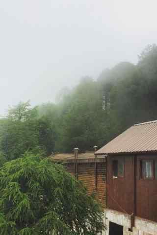 太白山云雾绿色风景手机壁纸