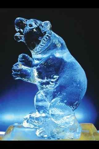 哈尔滨冰雕展之可爱的北极熊冰雕手机壁纸