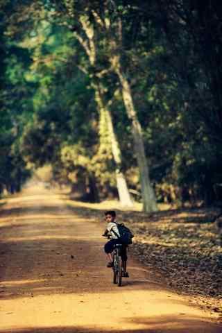 林间小道上骑单车的孩子手机壁纸
