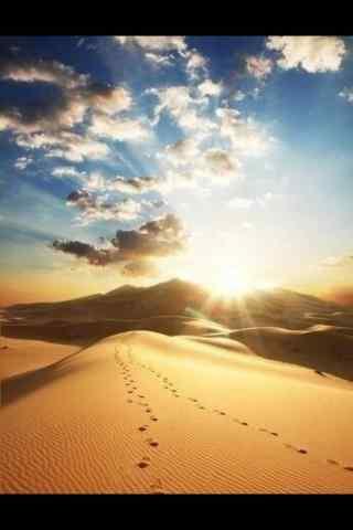浩瀚晴空下的沙漠手机风景壁纸
