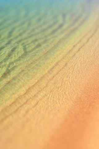 唯美小清新的沙漠绿洲手机风景壁纸