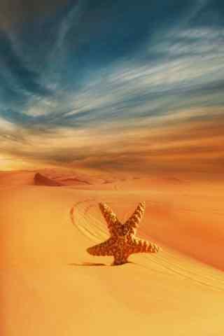 创意沙漠海星手机风景壁纸