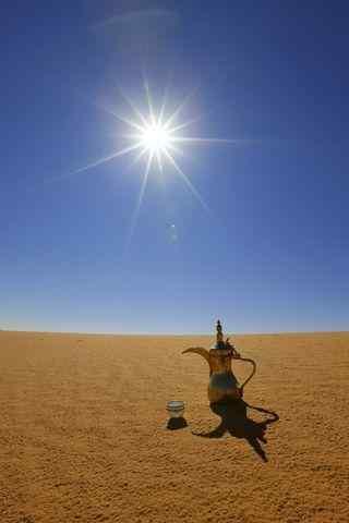沙漠中的一壶酒手机风景壁纸
