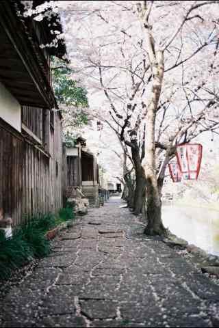 小清新日本街道摄
