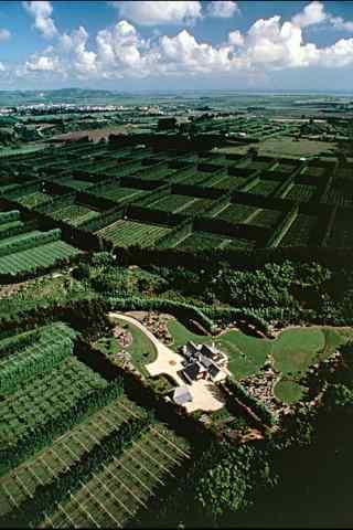 鸟瞰农场风景图片手机壁纸