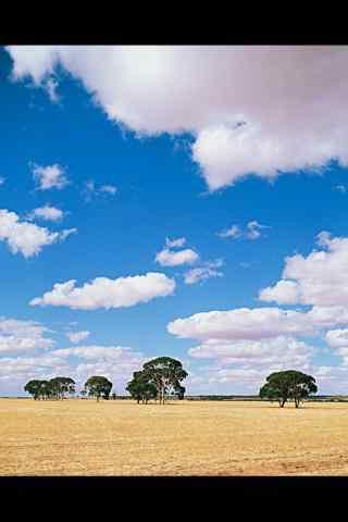 农场的蓝天白云风