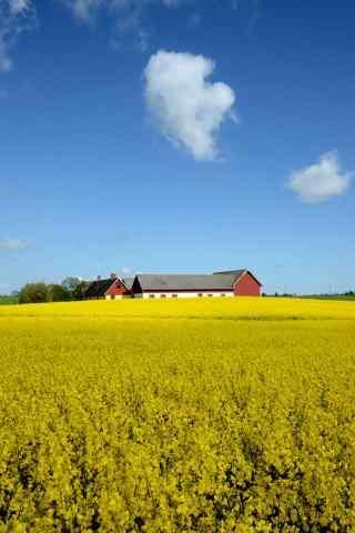 唯美的农场风景图片手机壁纸