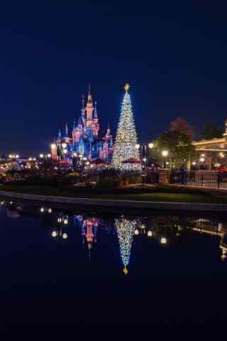上海迪士尼乐园圣诞树远景手机壁纸