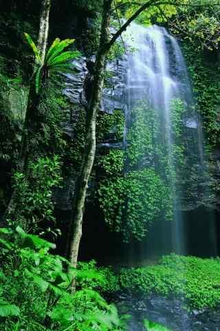 林间瀑布风景护眼手机壁纸
