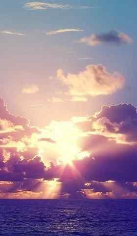 海上夕阳粉色唯美