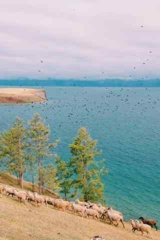 贝加尔湖小清新风景图片手机壁纸