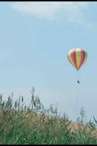 宁夏沙漠上的热气球图片手机壁纸