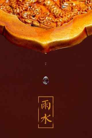 雨水节气之故宫特色图片手机壁纸
