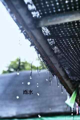 雨水节气之茅草屋