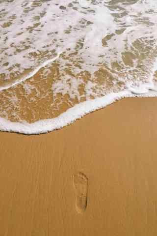 小清新沙滩上的足