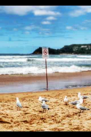 小清新海滩上的海