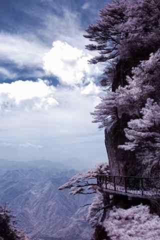 山峰上开满了桃花树手机壁纸
