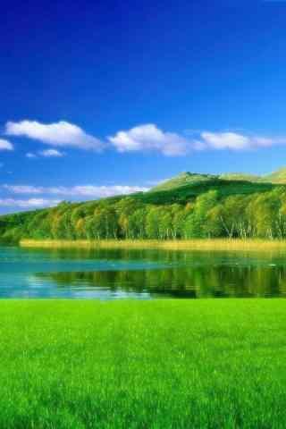 好看的绿色风景手