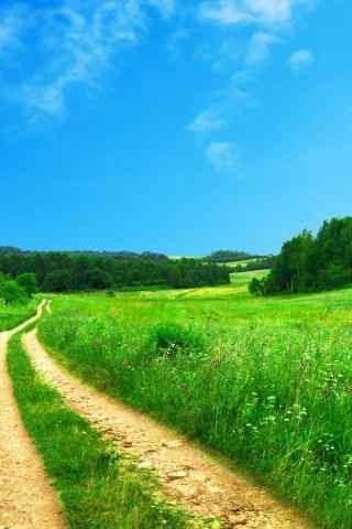 绿色自然风景高清