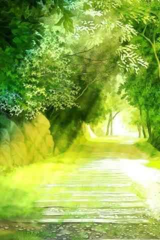 绿色阳光风景手机