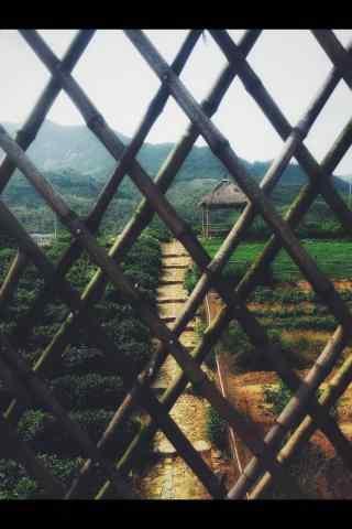 从栅栏处看莫干山