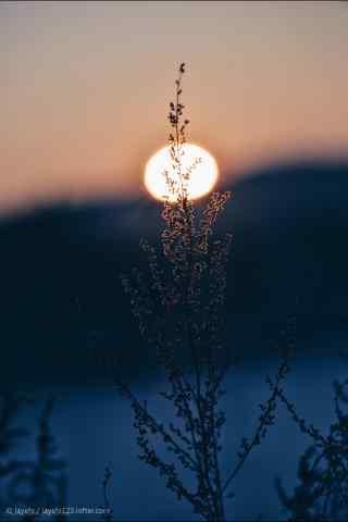 夕阳下的黑龙江美景手机壁纸