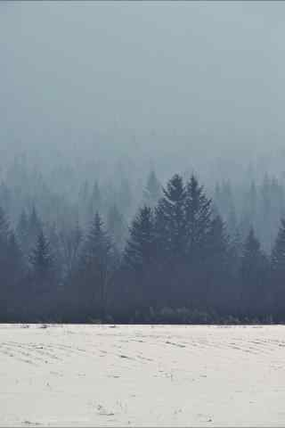 黑龙江白雪皑皑的一片手机壁纸