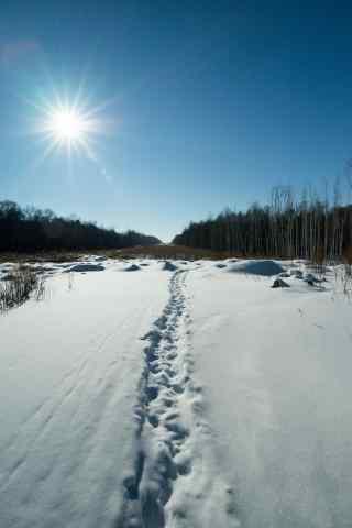 阳光下的长白山雪景手机壁纸