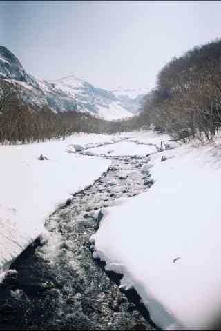 蓝天白云下的长白山雪景手机壁纸