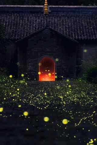 南京灵谷寺萤火虫手机壁纸