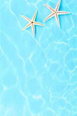 夏日清凉之海水与海星手机壁纸