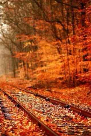 美丽的深秋铁路风