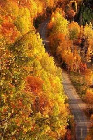 美丽的秋日风景手