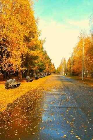 好看的深秋(qiu)公園(yuan)風景手機鎖屏