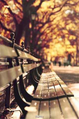 好看的秋日风景手