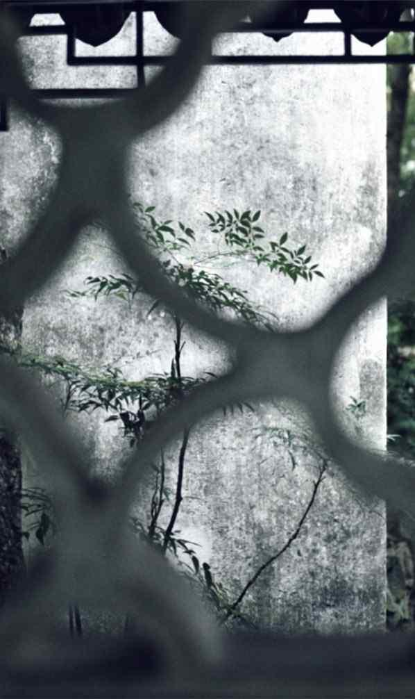 小清新园林风景手机壁纸