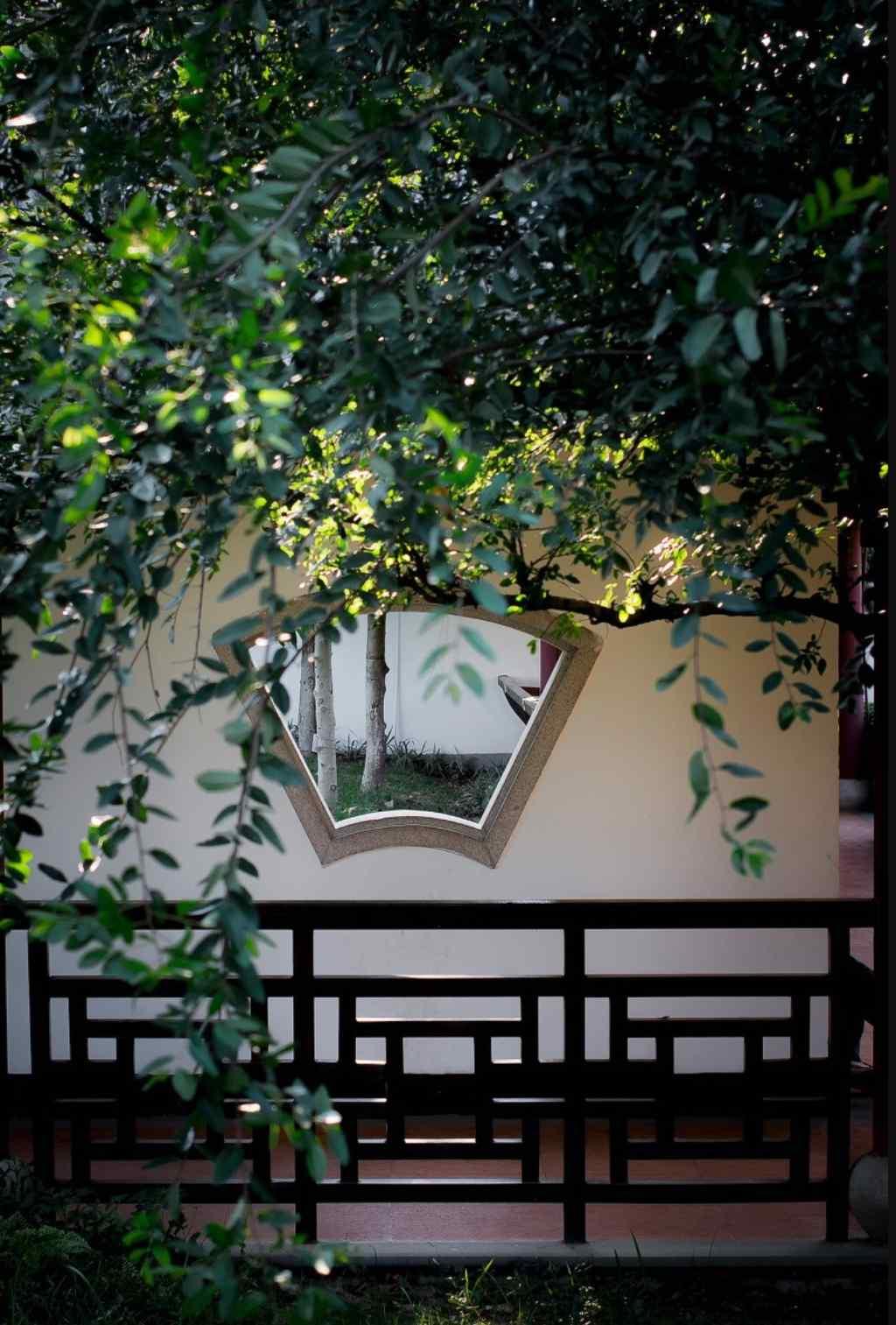 小清新园林风景手机图片