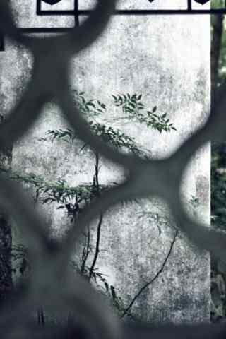 小清新园林风景手