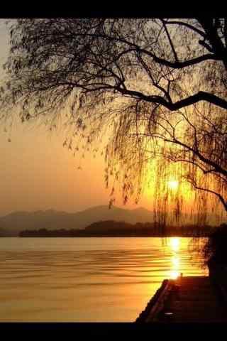 西湖夕阳美景手机