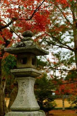 美丽的秋日风景手机壁纸