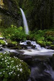 唯美瀑布自然风景