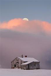 唯美清凉雪景自然风景手机壁纸
