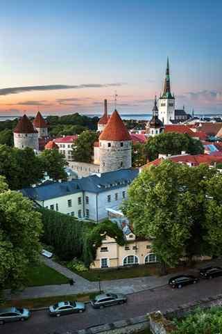 手机建筑壁纸:爱沙尼亚 塔林老城的俯瞰