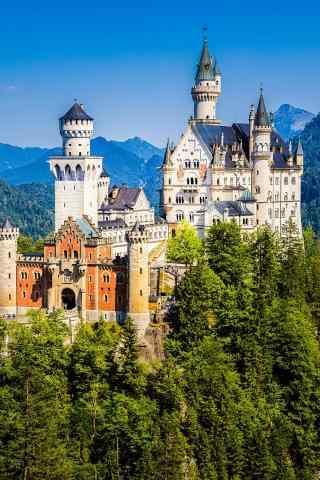 城堡屹立在丛林中手机壁纸