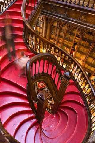 图书馆中的楼梯手