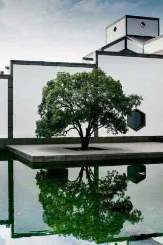 苏州博物馆唯美风
