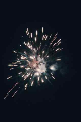 夜空中美丽的烟花图片