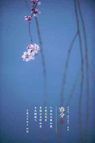 小清新春分风景手