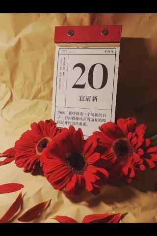 清新春分风景手机
