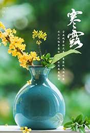 寒露鲜花插花瓶绿
